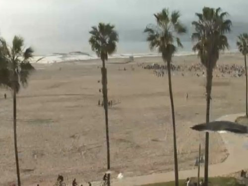 Venice Beach, Los Angeles live cam
