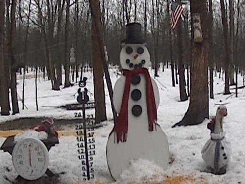 Michigan Snowman, Gaylord live cam