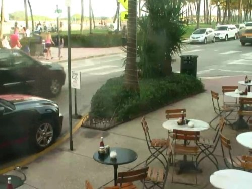 News Cafe, Miami live cam