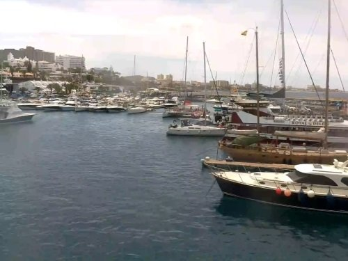 Puerto Colon Harbor, Costa Adeje live cam