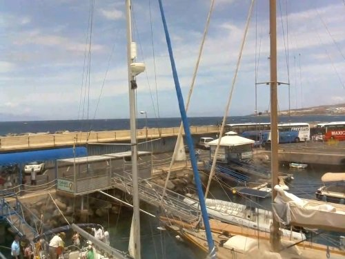Royal Delfin, Costa Adeje live cam