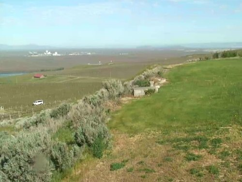 Sagemoor Vineyard, Pasco live cam
