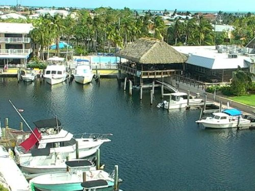 Key Largo, Florida Keys live cam